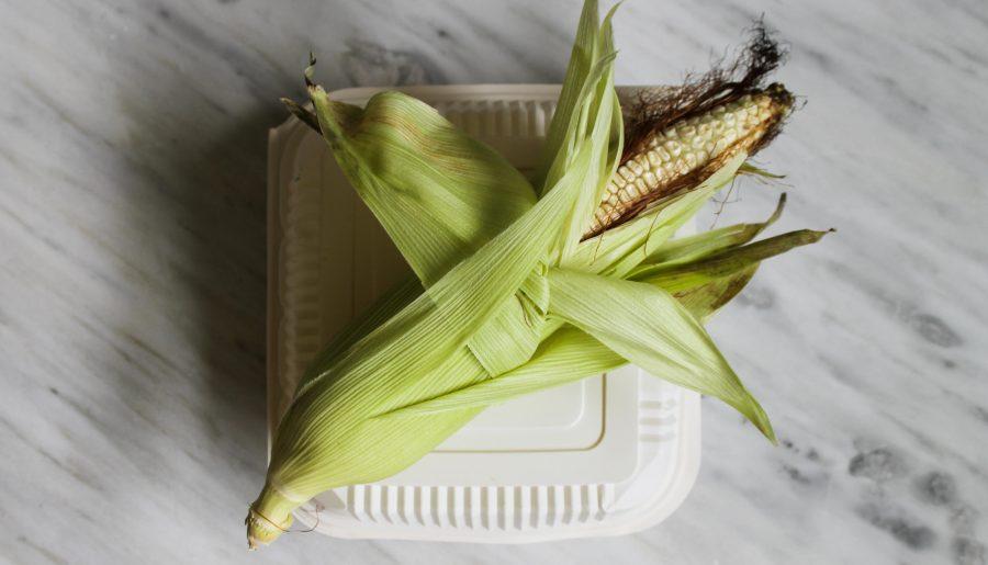 Desechables Biodegradables «Ecodisposables»